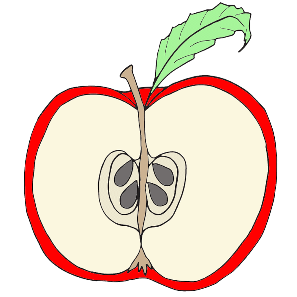 Cute apple clip art. Cut clipart graphic royalty free download
