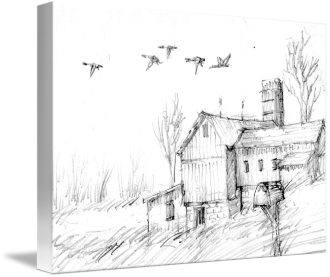Drawing barns pencil. Barn geese sketch by