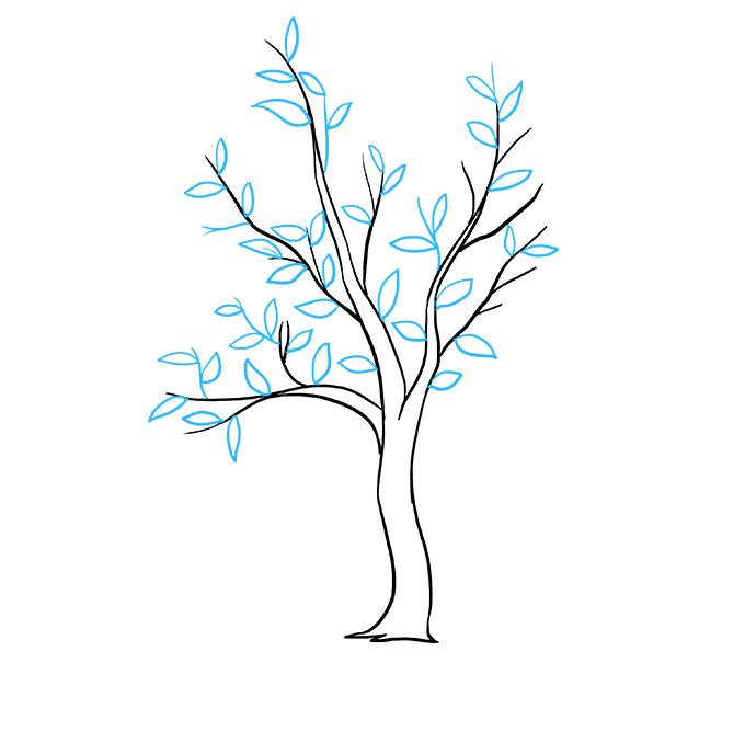 Drawing branches tree. How to draw a