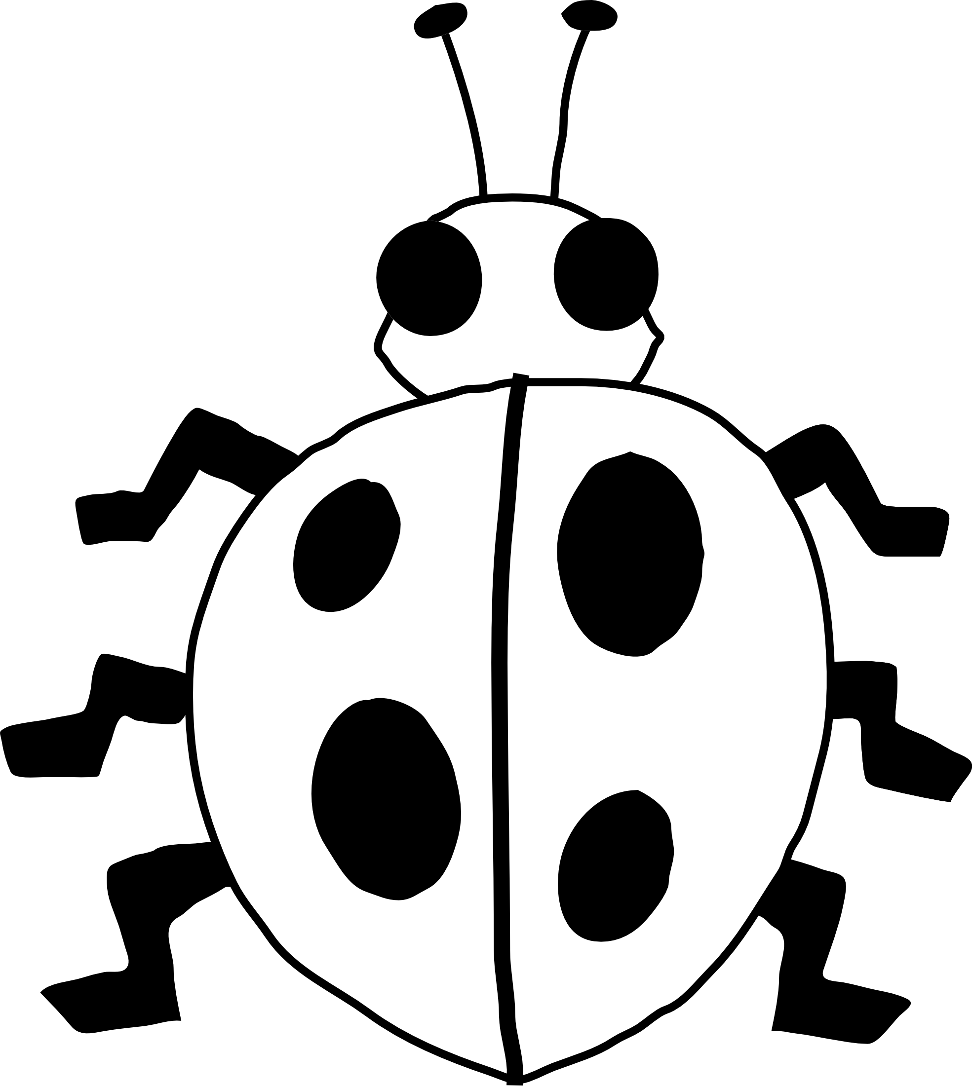 Drawing bugs line. Png black and white