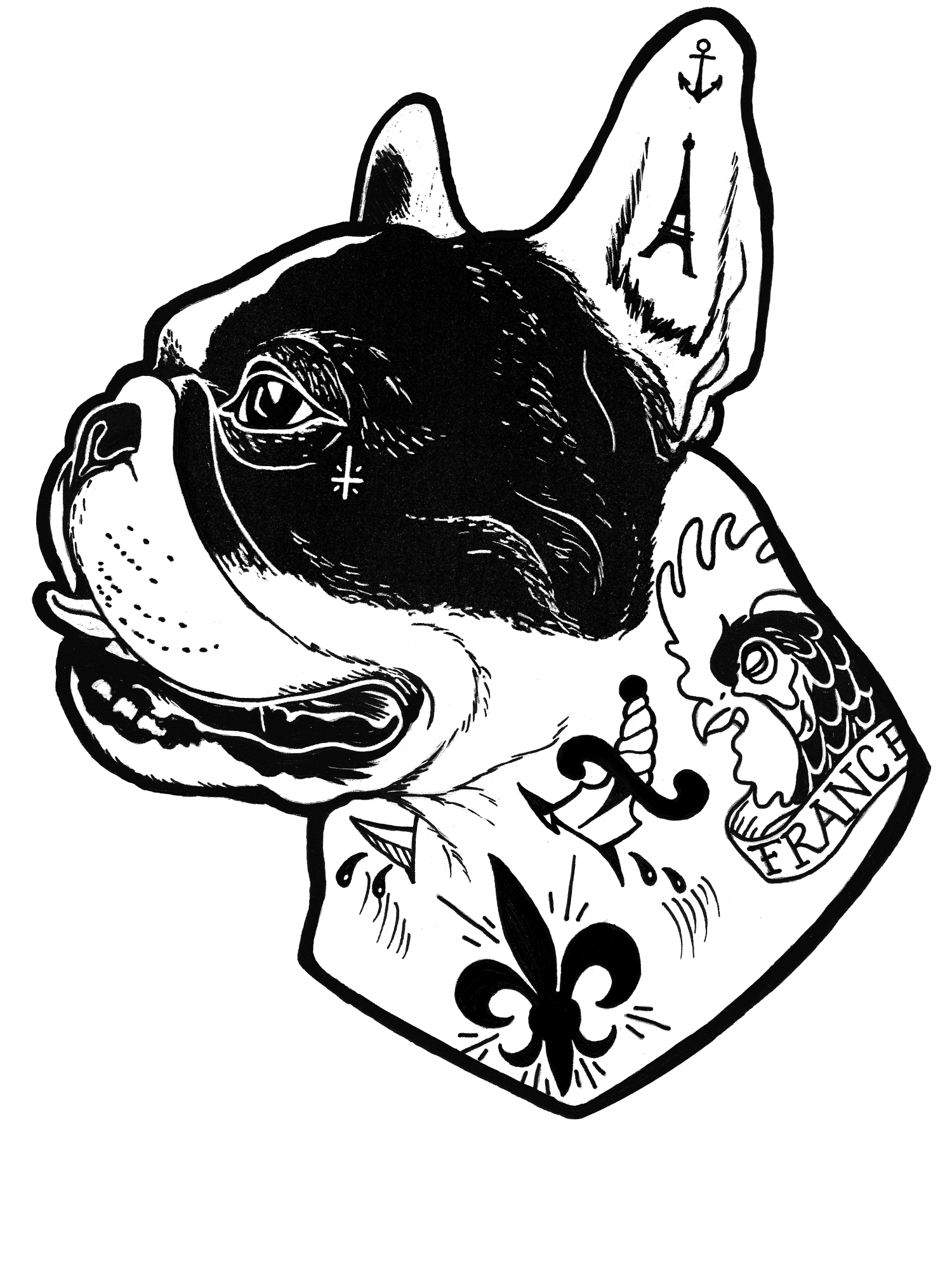 drawing bulldogs french bulldog