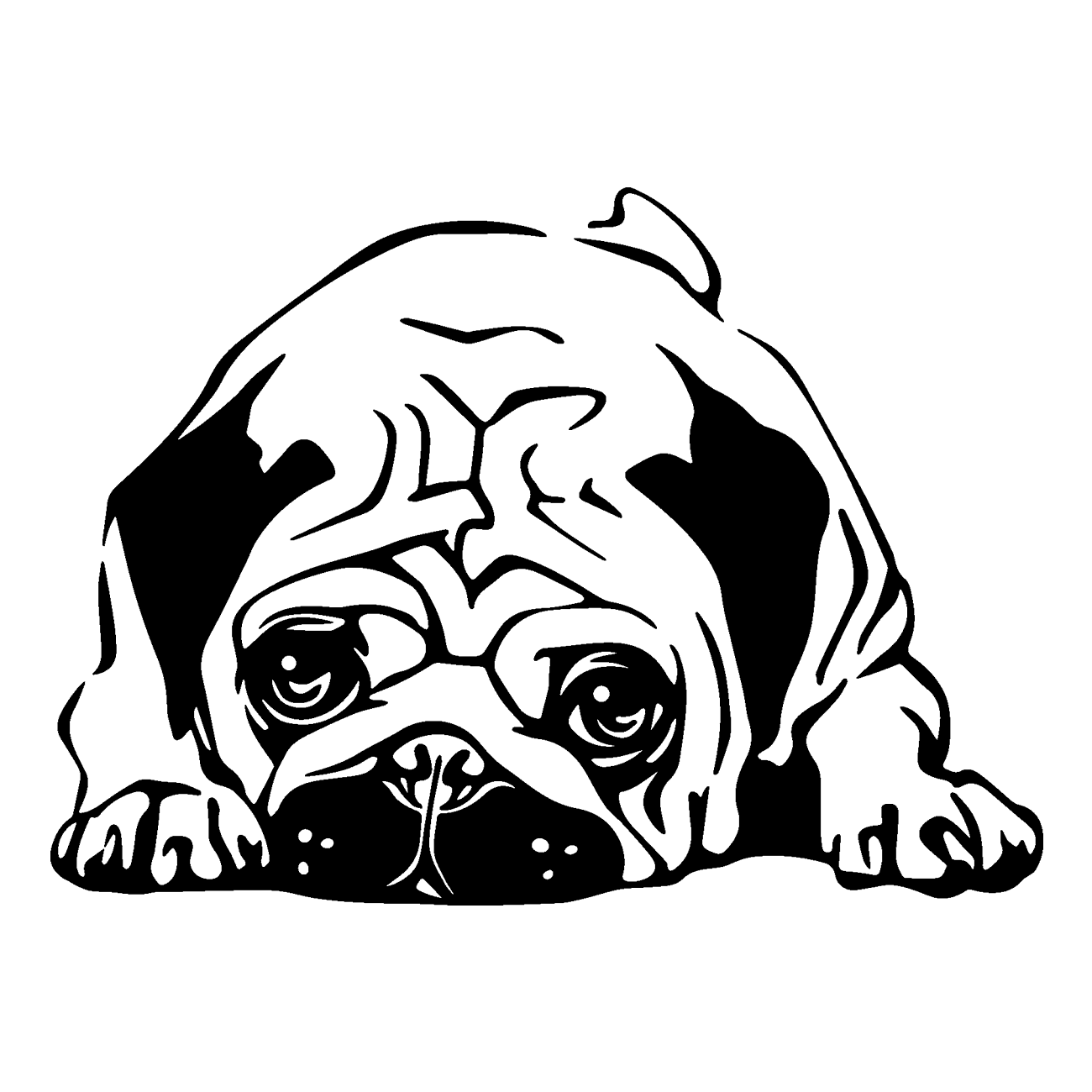 french drawing pug