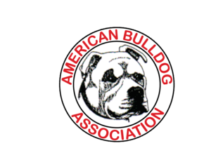 Conformation aba standard. Drawing bulldogs american bulldog png library
