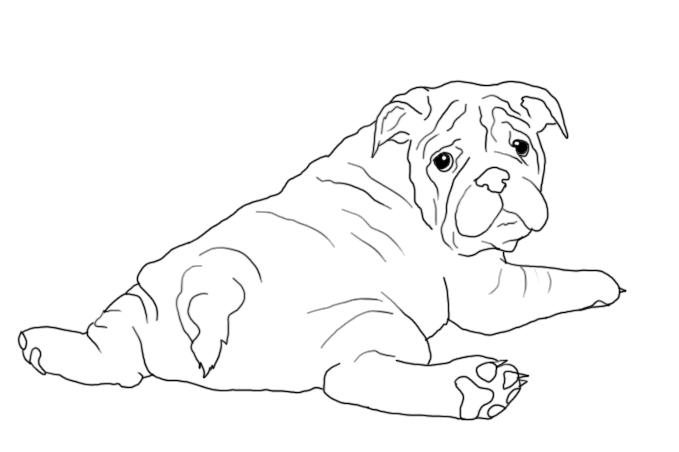 Drawing the puppy. Bulldog images at getdrawings