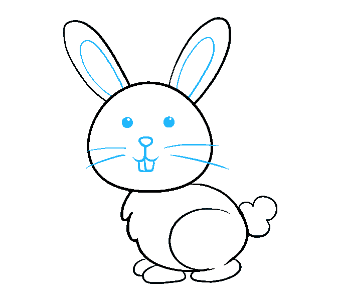 Rabbits drawing. How to draw a