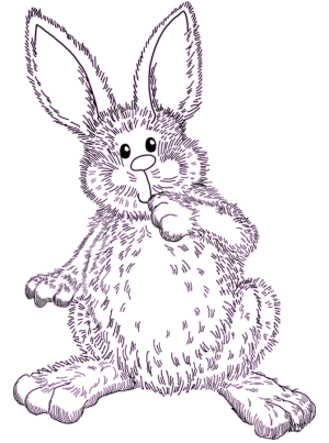 Drawing bunnies fairy tale. Confessions of a discount