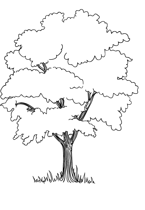 Drawing bushes coloring page. The trees in jungle