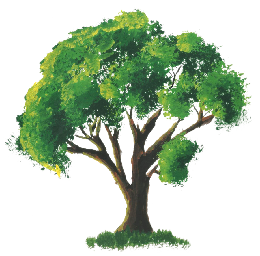 Drawing bushes painted. Stock tree painting by