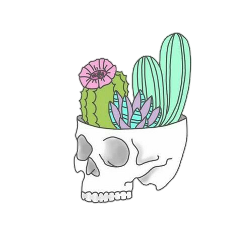 Cactus png hipster. Plant skull decoration aesthetic