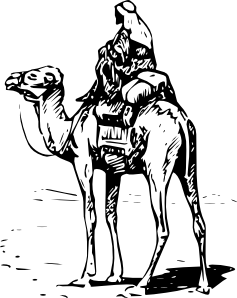 Drawing camel. Person riding clip art