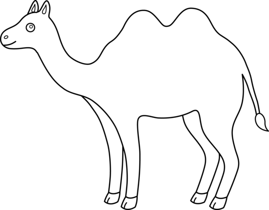 Drawing camels black white png. Collection of free humped