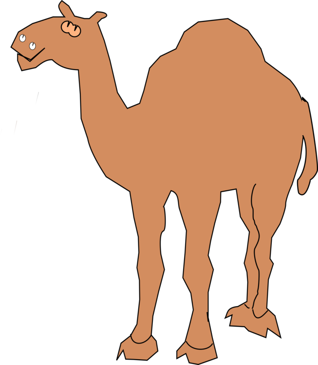 Drawing camels female. Camel camera silhouette free