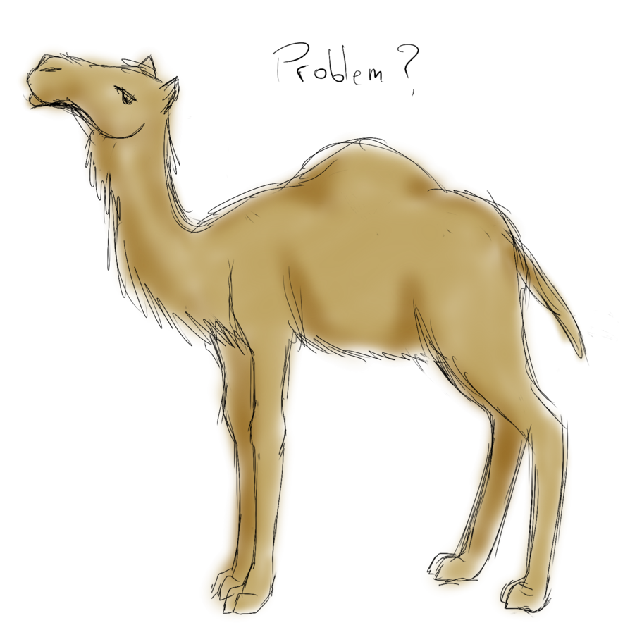 Drawing camels sketch. Camel request by popolis
