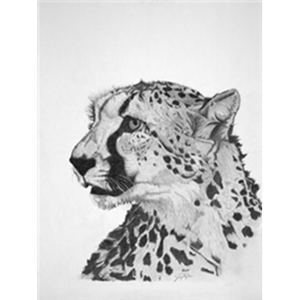 By catlover roblox . Drawing cheetah clipart library stock