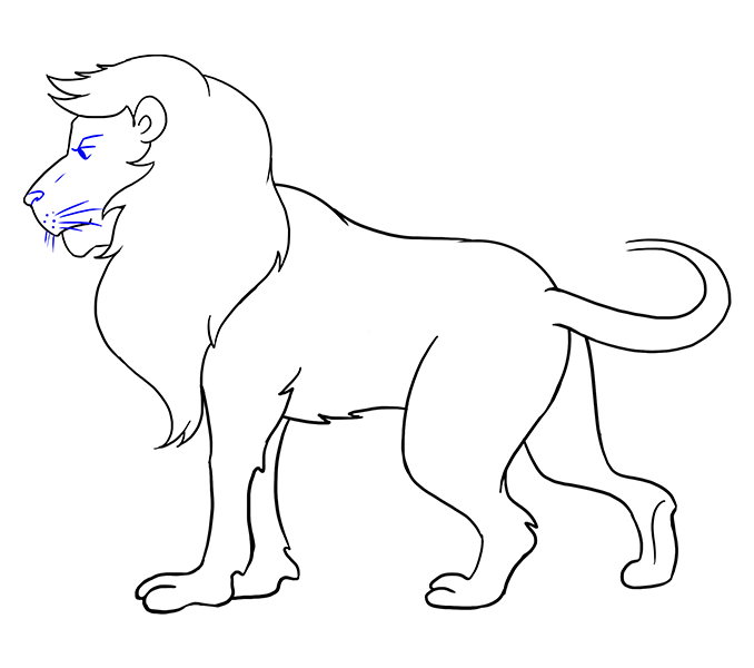 Drawing cheetah sketch. Collection of free lion