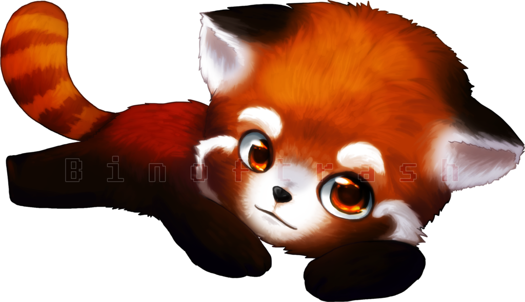Red panda png. Drawn china free collection