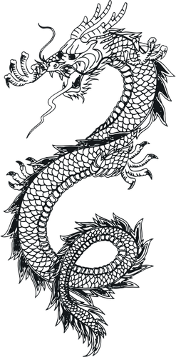 Drawing chinese skull. Vector of a dragon
