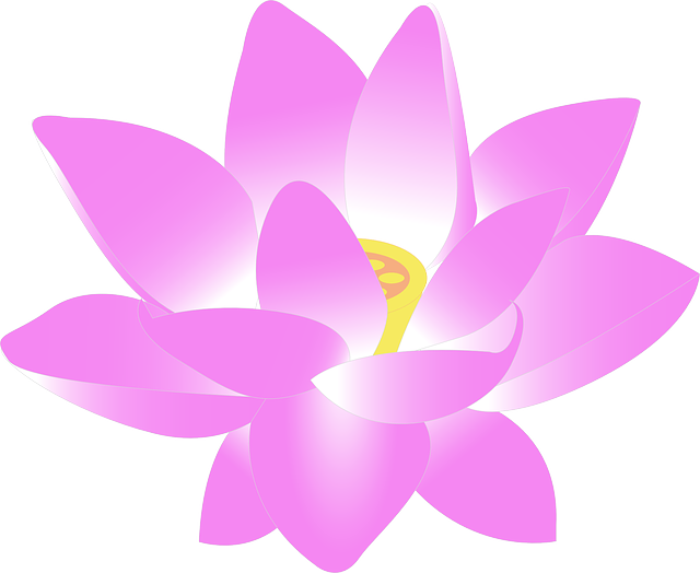Drawing chinese water lily. Free image on pixabay