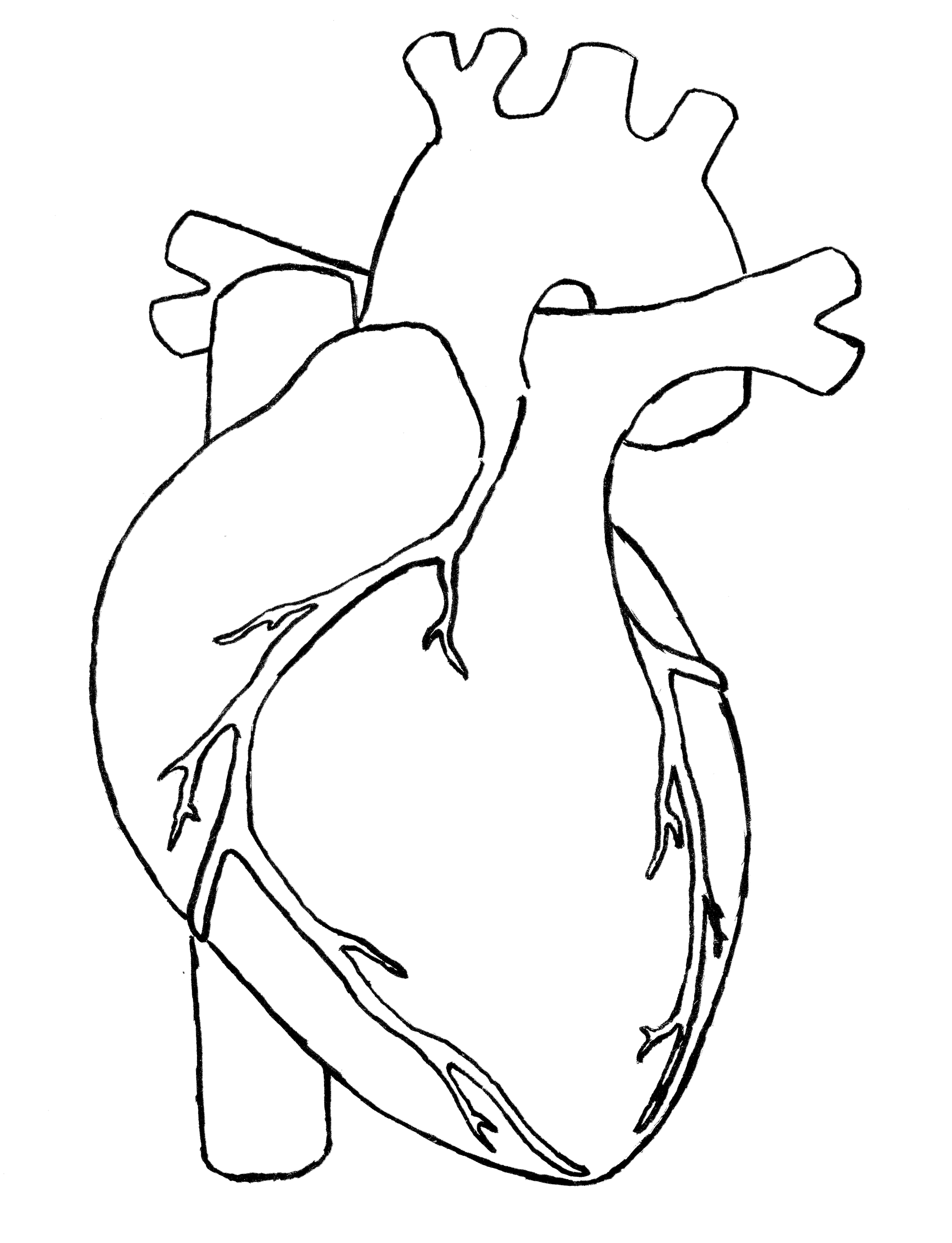 Drawing clipart heart. Line panda free images