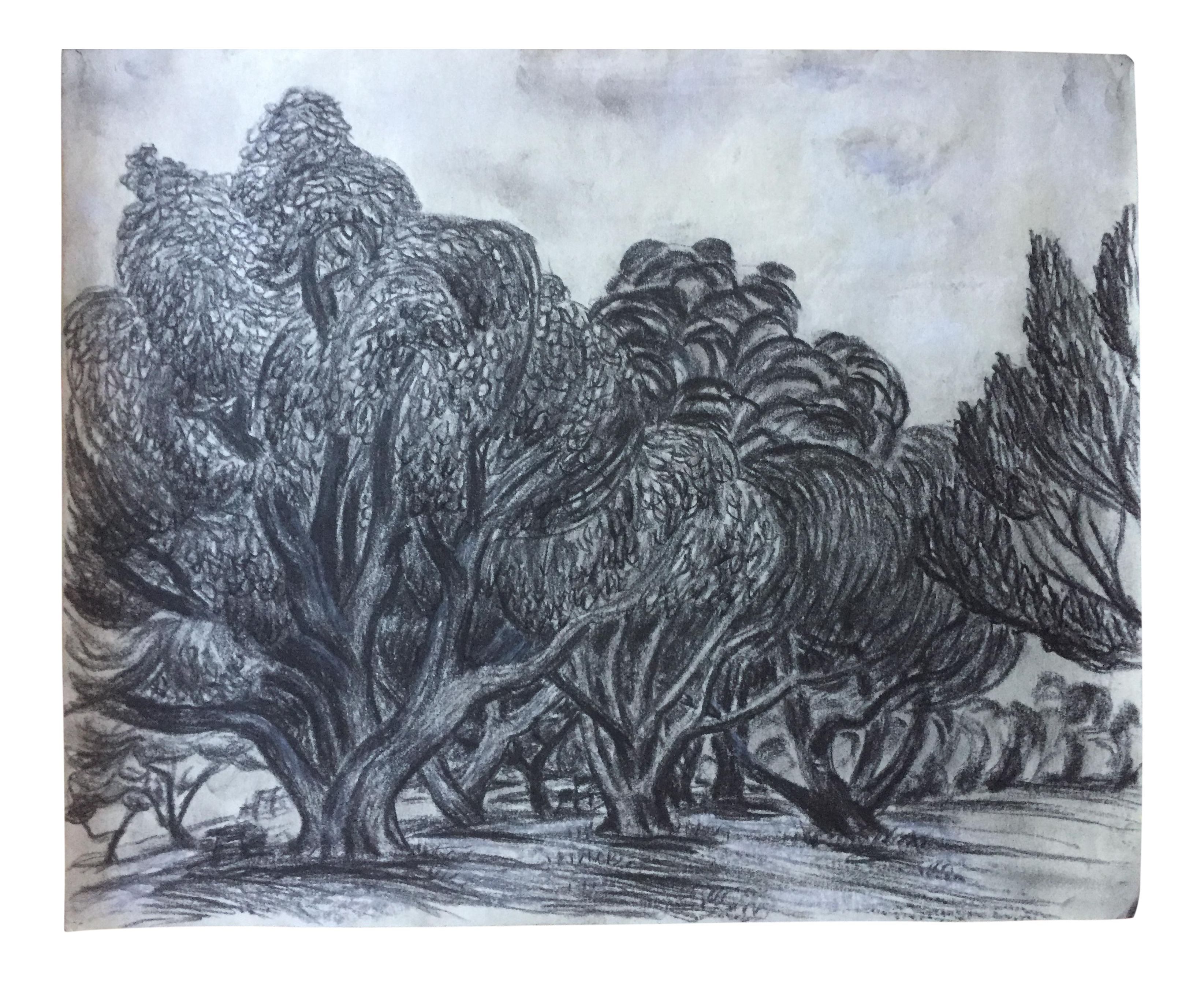 Drawing statue charcoal. Vintage swirly trees at