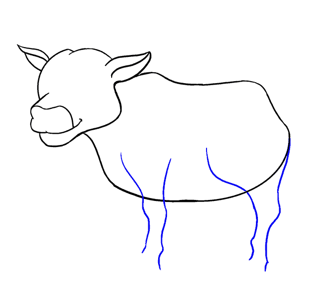 Mammal drawing first. How to draw a