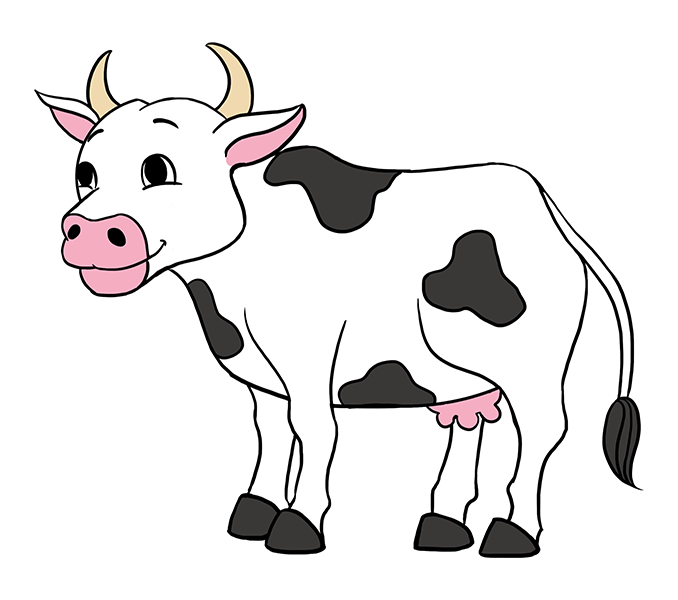 Drawing cow cute baby. Pictures of cartoon cows