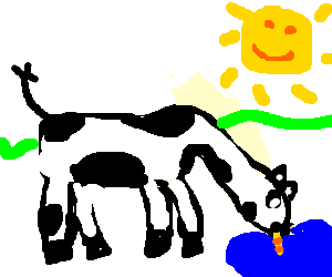 straw transparent cow