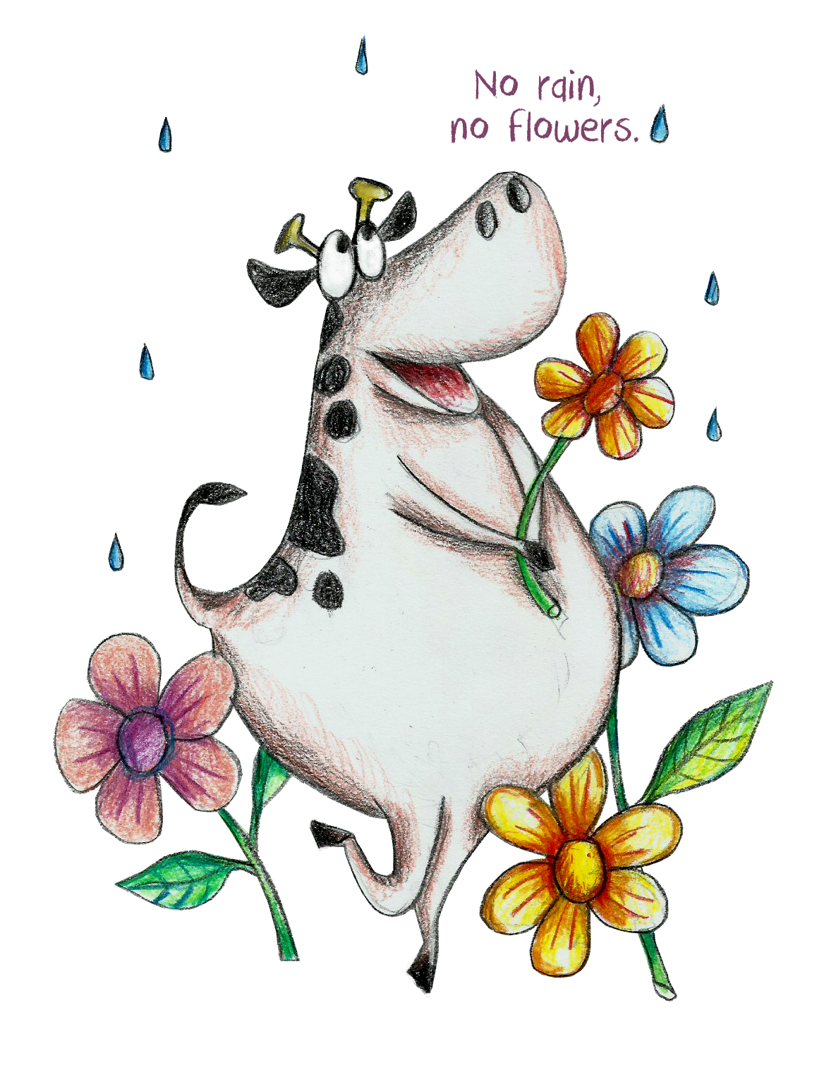Drawing cow flower. No rain flowers a
