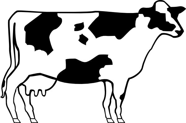 Beef vector caw. Drawn cattle simple pencil