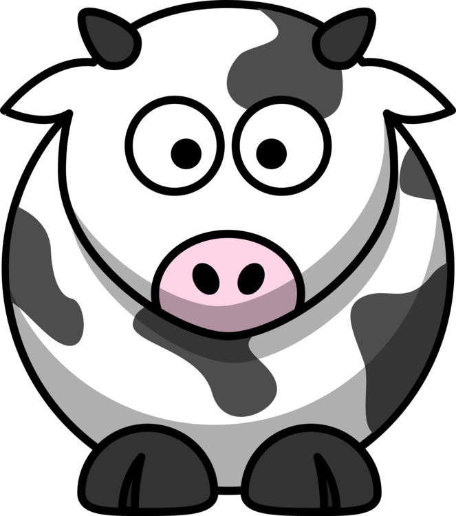Drawing cow pretty. White park cattle animation