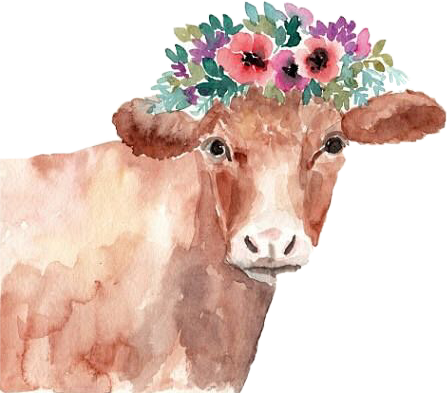 Drawing cow flower. Cows sticker challenge on