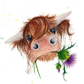 Drawing cow flower. Thistle mcmoo by fiona