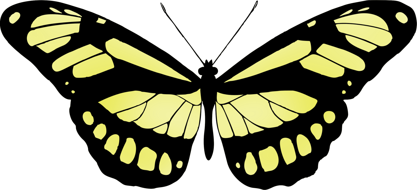 Super drawing unique. Monarch butterfly silhouette pictures