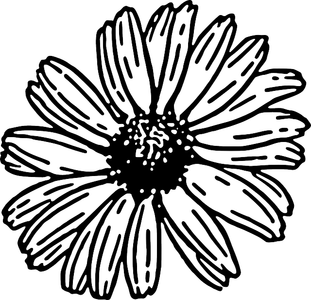 Drawing rockets clipart. Black outline daisy clip