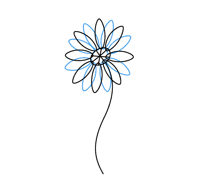 Drawing daisies. How to draw a