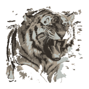 Drawing compositions creative. Tiger sscreative by spreadshirt