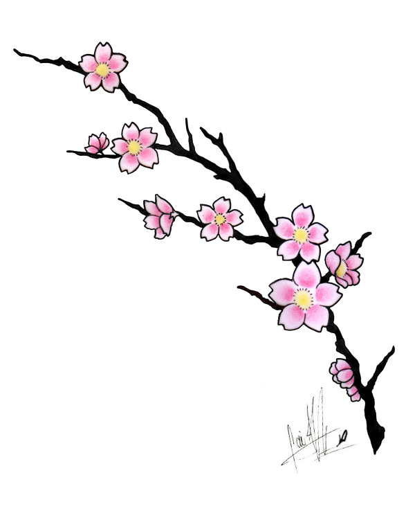 Cherry tattoo design by. Blossom clipart peach blossom graphic library download