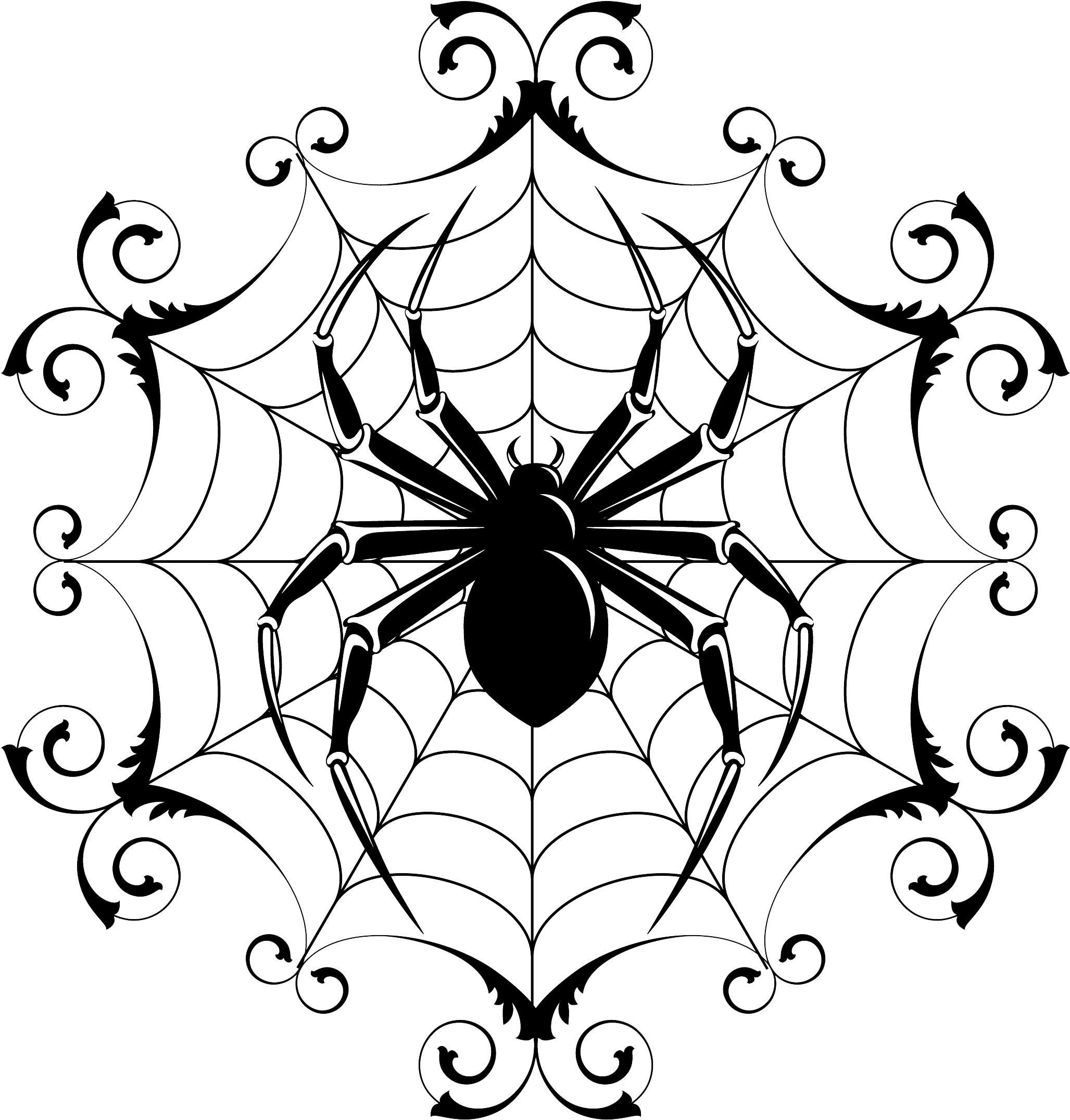 Download spider and web. Drawing detail halloween vector download