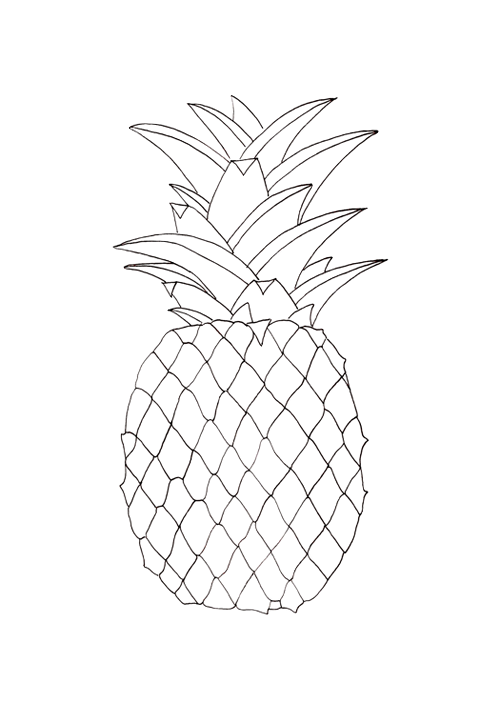 Pink drawing pineapple. None of these pictures