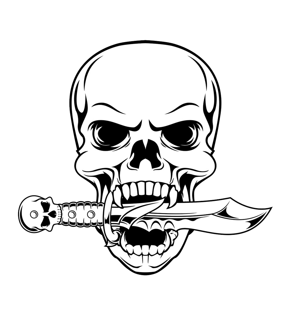 Drawing detail skull. Illustration transprent png free
