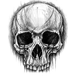 Drawing detail skull. Pin by emre aymal