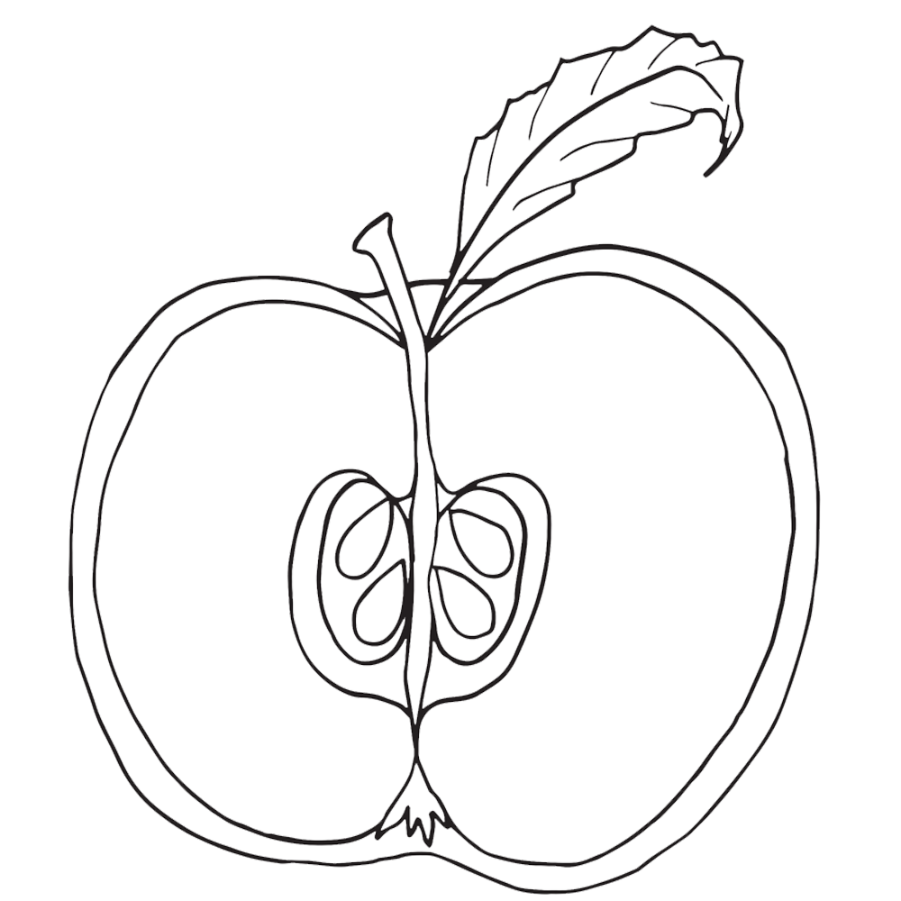 Drawing apple artistic. Computer at getdrawings com