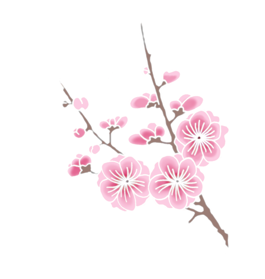 Drawing details cherry blossom. Image png animal jam