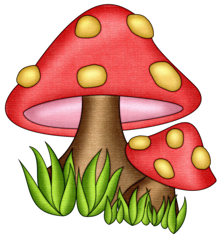 Mushrooms vector hand drawn. Pps shrooms png andyvideo