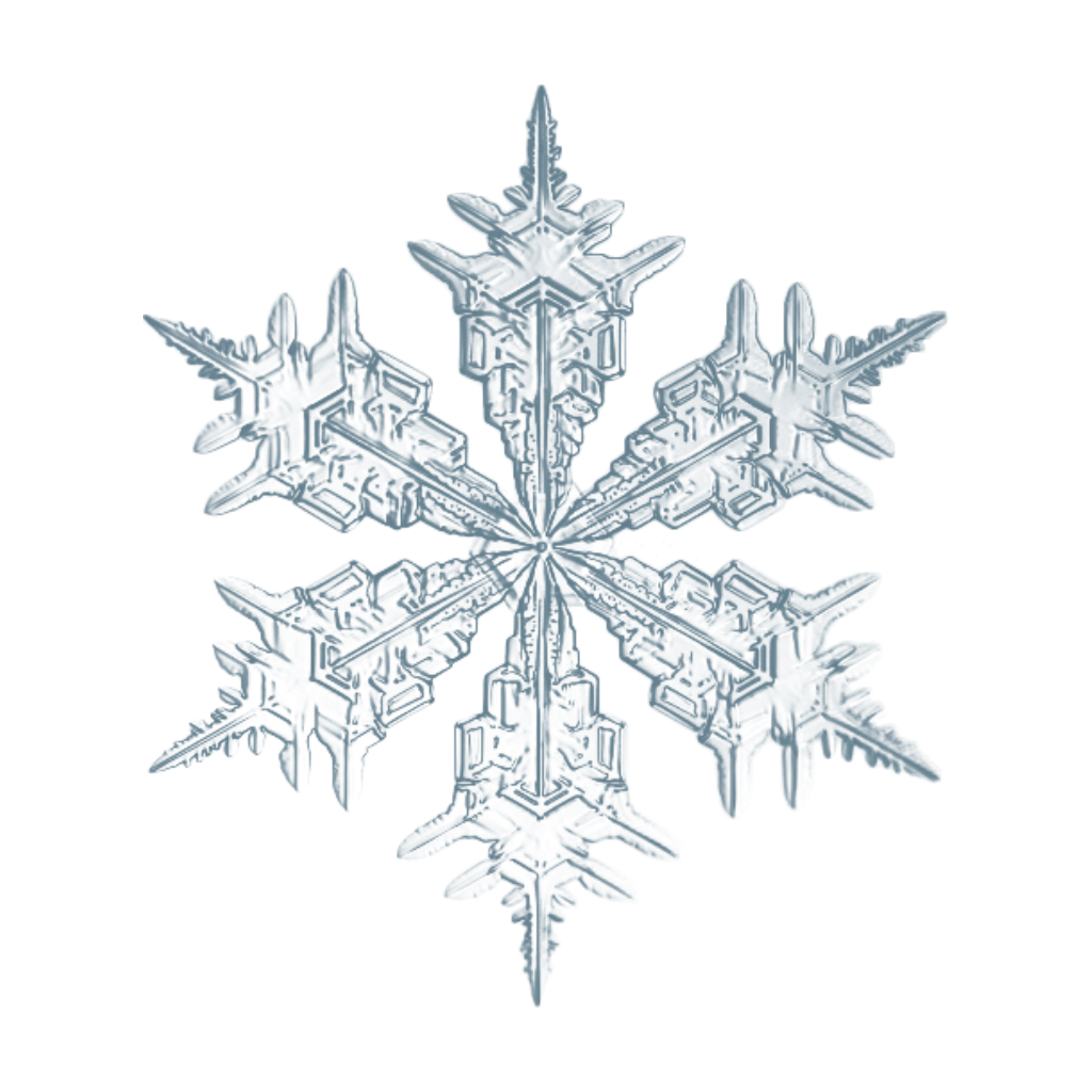Drawing details snowflake. Snow snowflakes realistic