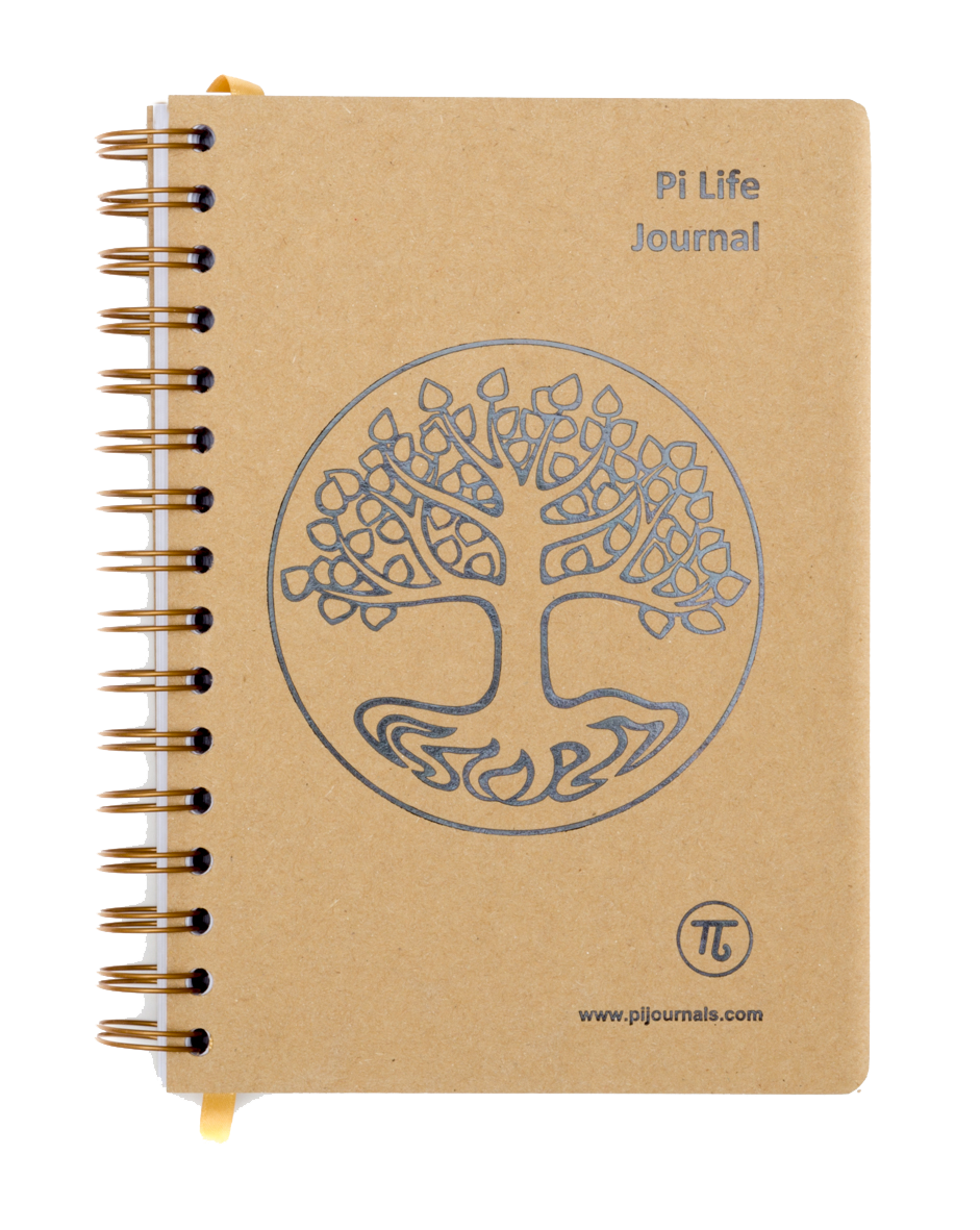 Pi drawing life. Journals improve your outlook