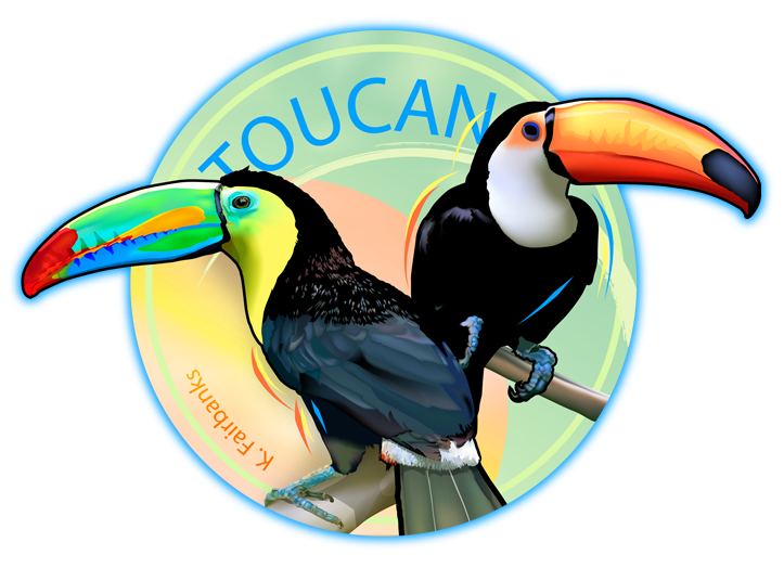 Drawing digital colorful. Toucan by k fairbanks