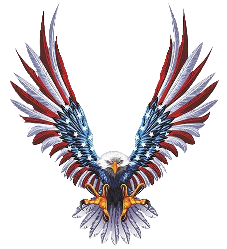 Drawing eagles american flag. Pin by spencer craig