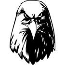 Drawing eagles front face. Search results for eagle
