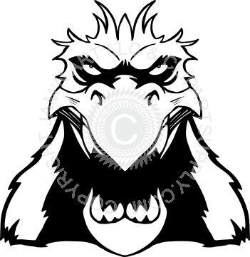Drawing eagles front face. Eagle head facing forward